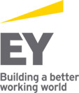 GIE ERNST & YOUNG -  annonces